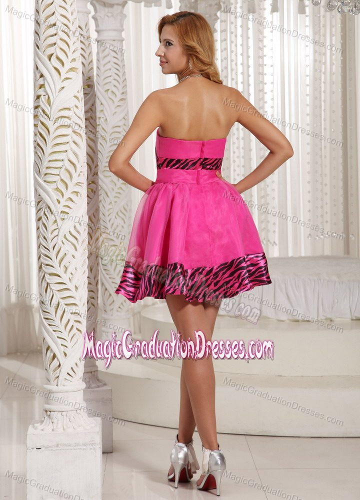 Zebra Graduation Dresses 46