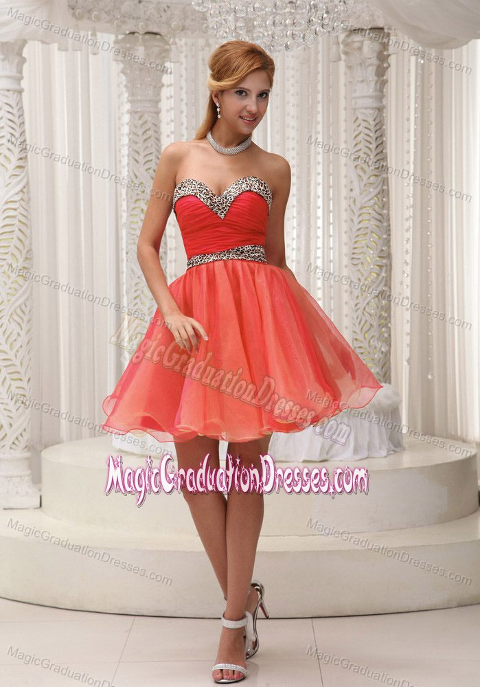 Ruched Sweetheart Mini-length 5th Grade Graduation Dresses in Orange Red
