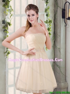 Strapless Appliques 2015 Winter New Graduation Dress in Champagne
