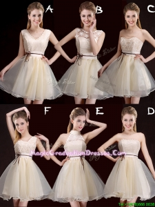2017 Lovely Belted Organza Short Graduation Dress in Champagne