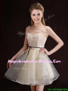 Gorgeous Belted and Applique Short Graduation Dress in Organza
