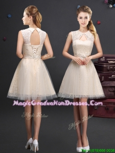 2017 Discount Turndown Short Graduation Dress with Appliques and Lace