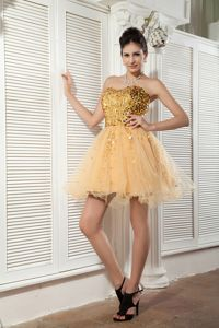 Champagne Sweetheart Organza Short Graduation Dresses with Sequins