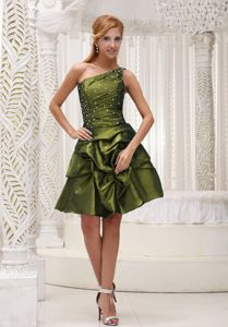 Olive Green One Shoulder Middle School Graduation Dresses in Kirkcaldy for 2013