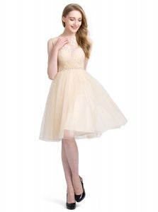 Fine Tulle Bateau Sleeveless Clasp Handle Beading and Lace Quinceanera Gowns in Champagne