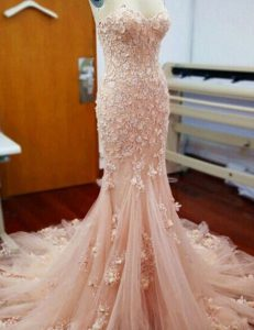 Great Mermaid Baby Pink Sleeveless With Train Appliques Zipper 15th Birthday Dress