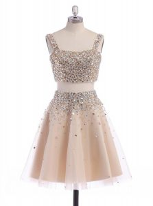 Extravagant Champagne A-line Straps Sleeveless Organza Mini Length Zipper Beading Quinceanera Gown