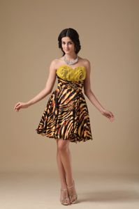 Zebra Sweetheart Multi-colored Cute Graduation Dresses in Scranton