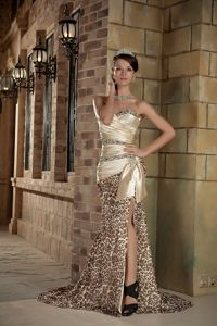 Leopard Beading Ruched Champagne Graduation Dresses in Massachusetts