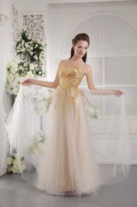 Champagne Sweetheart Empire Sequins Eighth Grade Graduation Dresses