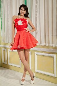 Red A-line Flowers Mini-length Evening Dress for Graduation in Point Clear