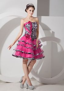 Cute Zebra Hot Pink Strapless Short College Graduation Dress with Layers