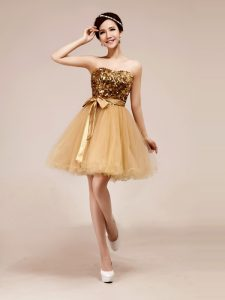 Knee Length A-line Sleeveless Champagne Sweet 16 Dress Zipper