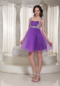 Appliques Decorate Straps 2013 Cheap Graduation Dresses for 8th Grade in Ladybank