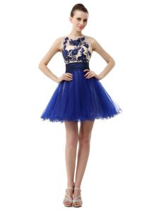 Scoop Appliques 15th Birthday Dress Royal Blue Clasp Handle Sleeveless Knee Length