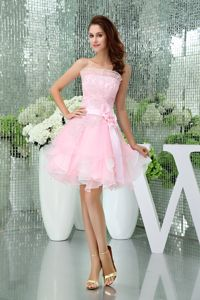 Pretty Baby Pink Organza Short Graduation Dress with Appliques and Flowers