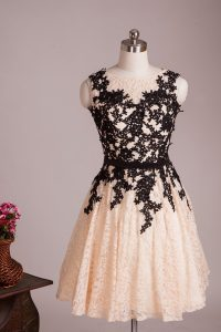 Beauteous Champagne A-line Scoop Sleeveless Lace Knee Length Zipper Lace Sweet 16 Quinceanera Dress