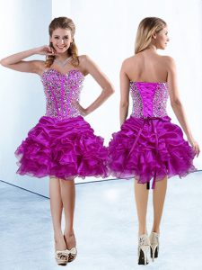 Wonderful Sweetheart Sleeveless Organza 15th Birthday Dress Beading and Ruffles and Pick Ups Lace Up